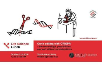 In October we hosted a Life Science Lunch on Gene editing with CRISPR – the technology, possibilities, use and ethical considerations. See the program and watch the talk of Sigrid Bratlie Thoresen from the Norwegian Biotechnology Advisory Board. Life Science Lunch is a series of seminars that is a collaboration between faculties and departments, the Student Parliament, the Science Library and UiO:Life Science. CRISPR was also on our program in June. Together with the Biotechnology Advisory Board we hosted a guest lecture with Swedish Fredrik Lanner. He presented the work on gene expression in early human embryos, and presented his plans to use CRISPR technology to edit genes in early human embryos. Read more and see the recording of his talk.