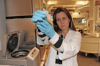How can we disrupt the communication between bacteria in biofilms in the oral cavity? The research group CrossTalk at the Department of Oral Biology, Faculty of Dentistry, is attempting to discover the answer to this. It is important for eliminating bacteria and to understand the role of biofilms in the development of antibiotic resistance. Here is Professor Fernanda Cristina Petersen who heads the group. Read more on the research group's web page. Read more about research on antibiotic resistance at UiO. Photo: © UiO/Per Gran, OD