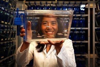 How do genes that may predispose individuals to bipolar disorder and schizophrenia affect nerve cells? Researchers at the Biotechnology Centre of Oslo combine computational modelling with new genetic models in zebrafish. The objective is to find new drugs for diseases. The work is headed by researcher Camila Vicencio Esguerra. Read more on the group's web page. Photo: © UiO/Terje Heiestad