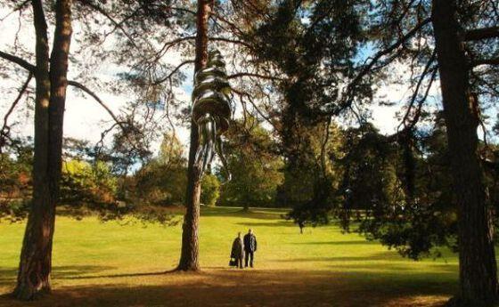 Image may contain: Nature, Tree, Natural landscape, Natural environment, Woody plant.