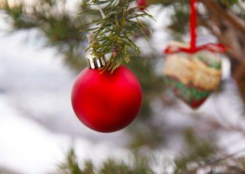 Bildet kan inneholde: julepynt, tre, juletre, rød, julepynt.