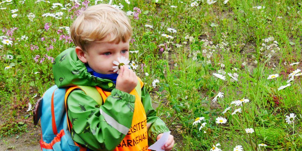 Bildet kan inneholde: personer i naturen, barn, grønn, gress, småbarn.