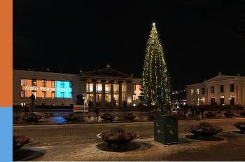 Bildet kan inneholde: vindu, fasade, natt, blomsterpotte, julepynt.