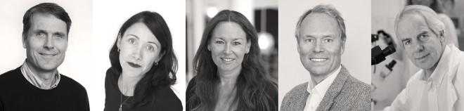 Årets vinnere av de fem UiO-prisene: Fra venstre: Ole Andreassen, Trude Storelvmo, Lisbeth M. Brevik, Hans Petter Graver, Bjarne Bogen