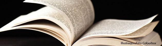 Bilderesultat for litteraturvitenskap