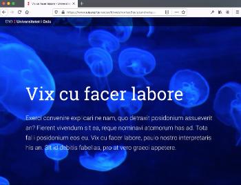 Bildet kan inneholde: blå, tekst, lys, font, teknologi.